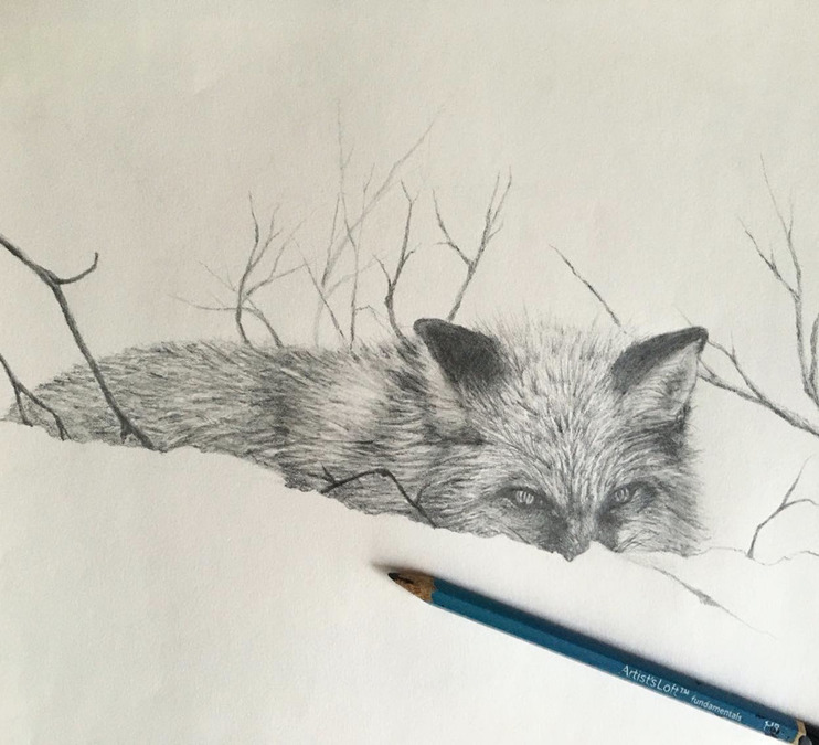 Nature Drawing (online)